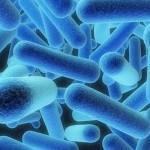 JK2_Legionnaires-Disease-150x150