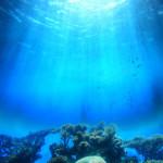 ocean_coral-150x150